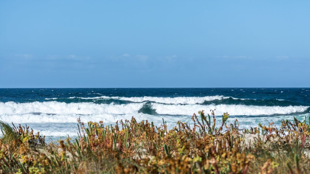 Razo Surf Town in SPain