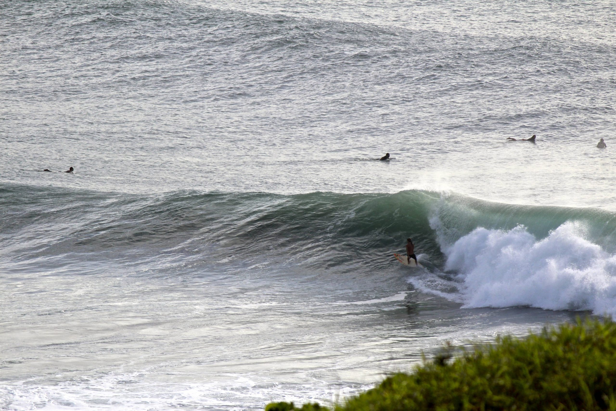 lennox head surf spot in Byron Bay