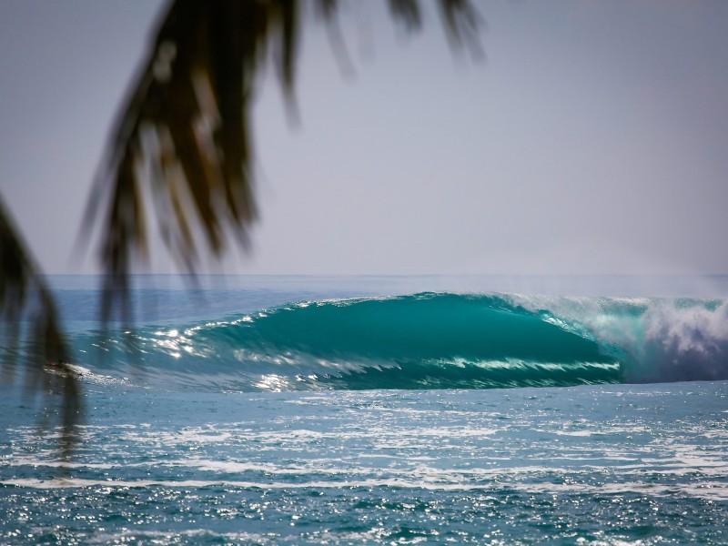 surfing mentawai islands