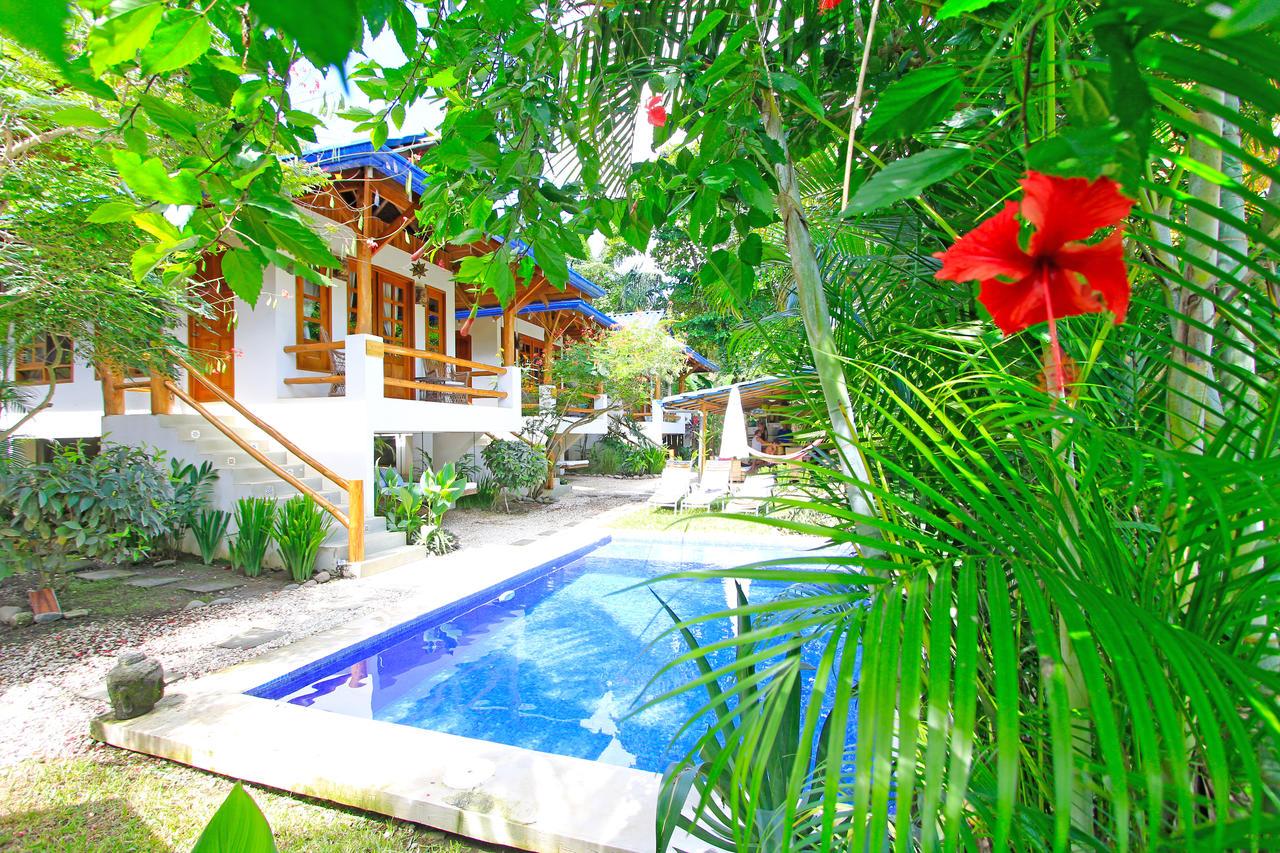 surf hostel in santa teresa costa rica