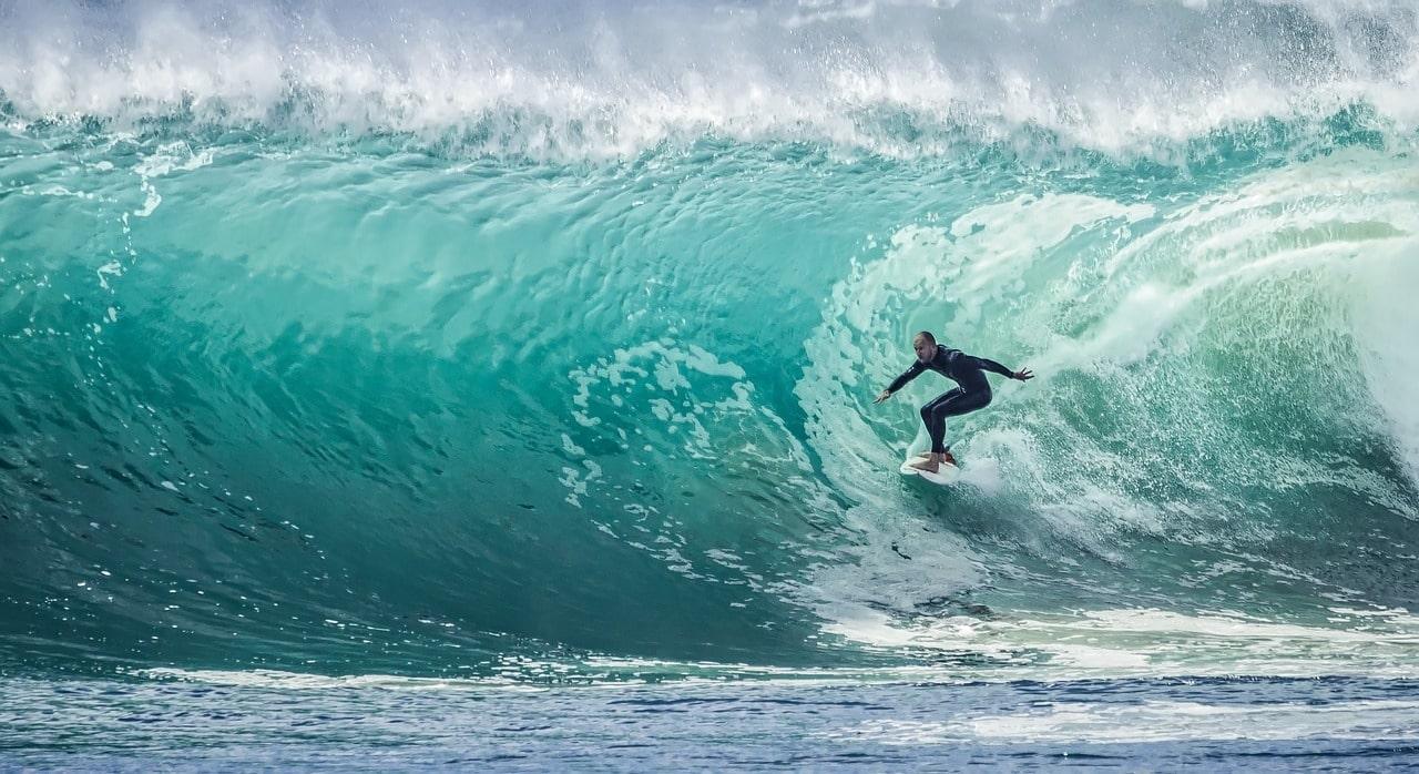 surfing at shark island australia