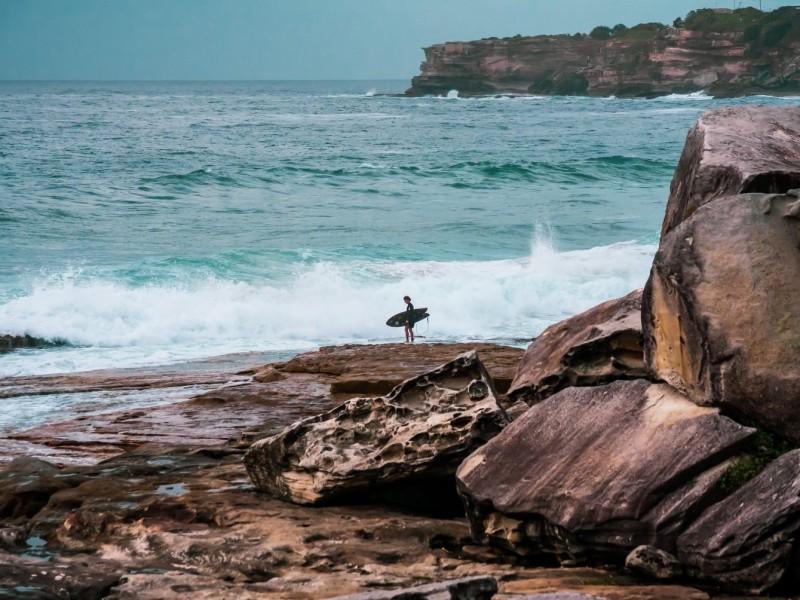 surfing sydney